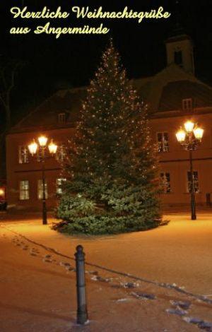 001 Weihnachtstanne am Rathaus